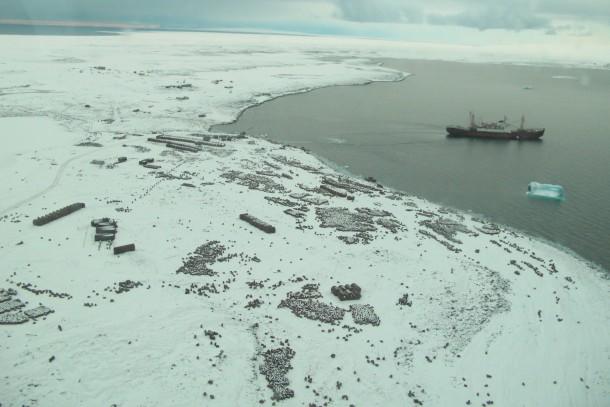 The polar research vessle Mikhail Somov at Franz Josef Land. Photo: Russian Polar Foundation.