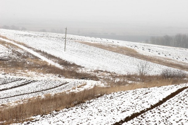 Frosty fields in Ukraine. Photo: Patrik Rastenberger
