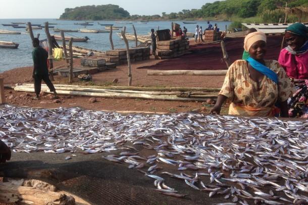 Fish smoking in Tanzania. Photo: Kari Hämekoski, NEFCO