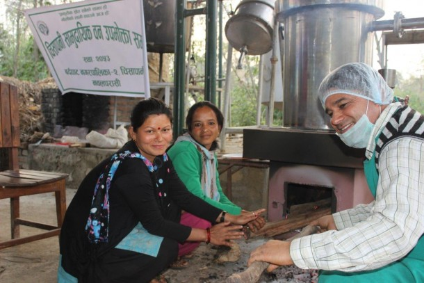 The women's co-operatives are responsible for the restoration activities, harvesting and distilling. Photo: Emeli Möller