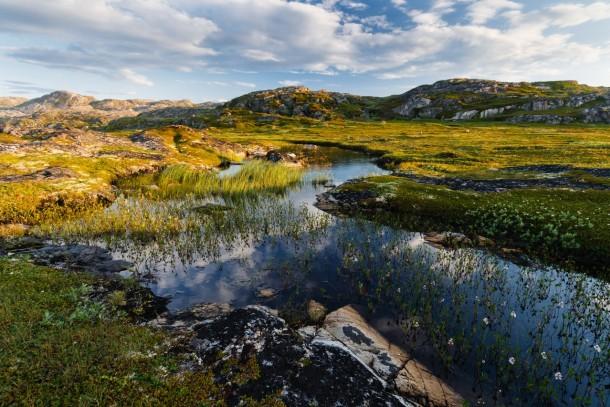 The Nemetskiy peninsula in the Barents Sea. Photo: Shutterstock